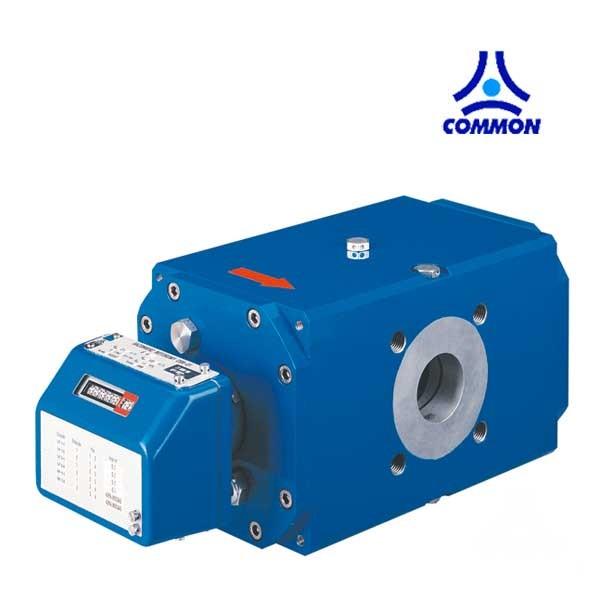 medidores de gas comerciales e industriales rotativos common CGR-01